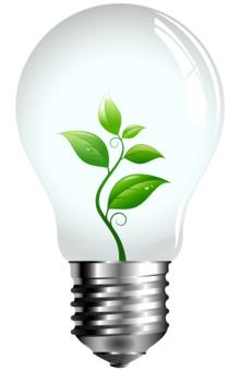 Skillsnax_lightbulb